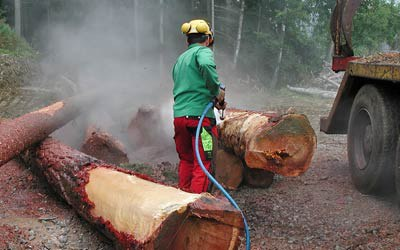 DYNAJET for agriculture & the timber industry